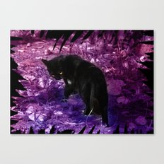 ...Lady not in mood Canvas Print