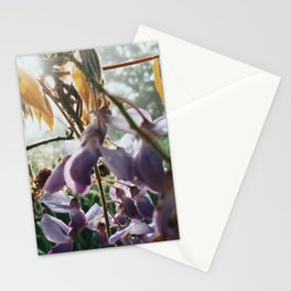 Mess of Wildflowers Stationery Cards