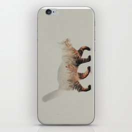 Cat: Maine Coon iPhone Skin
