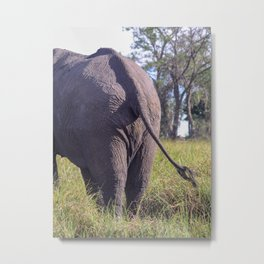 Elephant butt & sweeping tail | Humor Travel photography Metal Print