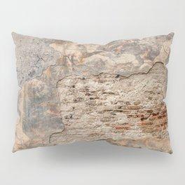 Renaissance Wall Pillow Sham