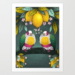 Yellow Headed Fruit Dove Art Print