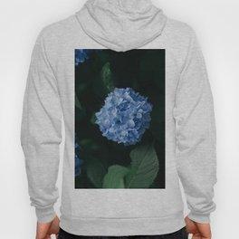 Beautiful Blue Hydrangea Hoody