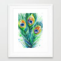 peacock feather Framed Art Prints featuring Peacock feather  by Slaveika Aladjova