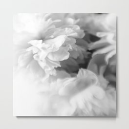 Blured white peonies Metal Print