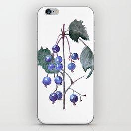 Watercolor Blueberries iPhone Skin