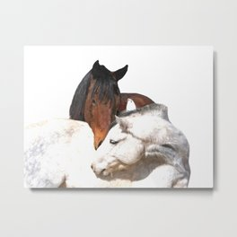 Horses in Love Metal Print
