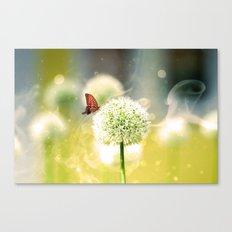 Allium fantasy flowers Canvas Print