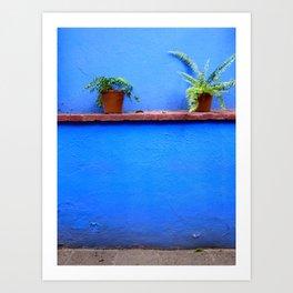 Standing sentry at La Casa Azul Art Print