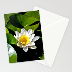 Pond Lilly Stationery Cards