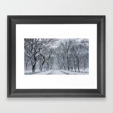 Snow in Central Park Framed Art Print