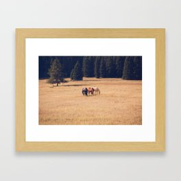Montana Collection - Horses on the Ranch Framed Art Print