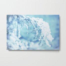 Snowy Spruce Needles 16 Metal Print
