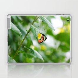 Beautiful Butterfly Laptop & iPad Skin