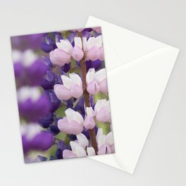 Lupinos Stationery Cards