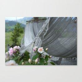 descanso entre rosas Canvas Print