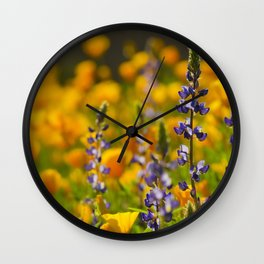 Purple Lupine and Golden Poppies Wall Clock