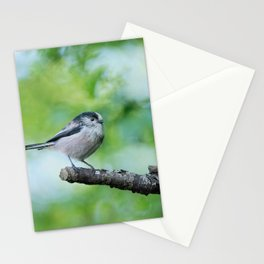 Long-Tailed Tit Stationery Cards