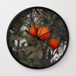 Three oranges on an orange tree Wall Clock