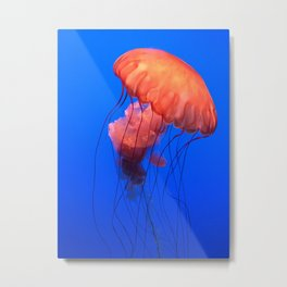 u jelly Metal Print
