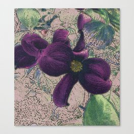 Dogwood Red-Violet on Tan Canvas Print