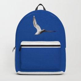 InspireNation Backpack
