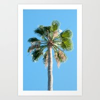 Vertical Palm Tree Photo Print Art Print
