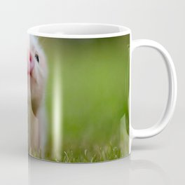 Little Pig Coffee Mug