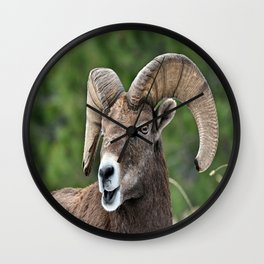 Big Horn Mountain Sheep Wall Clock