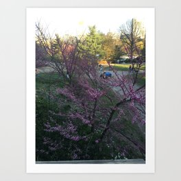 Afternoon in Central Park Art Print