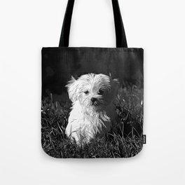 maltese dog vector art black white Tote Bag
