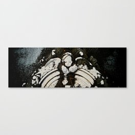 thousand years series (stone) Canvas Print
