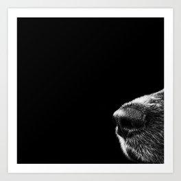 Sneaky Dog Art Print