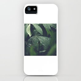Selective Focus Photography of Plant With Water Dews iPhone Case