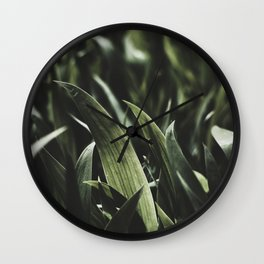 CLOSEUP PHOTOGRAPHY OF GREEN LEAF PLANT Wall Clock