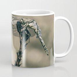 "The little predator ""Orthetrum cancellatum"" Coffee Mug"