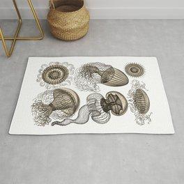 Ernst Haeckel Jellyfish Leptomedusae Wenge Rug