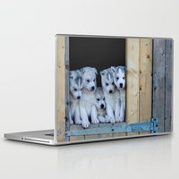 puppies Laptop & iPad Skins featuring Husky puppies by Nathalie Photos