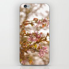 springtime  iPhone Skin