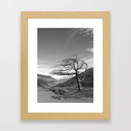 Lonely Cardrona Framed Art Print