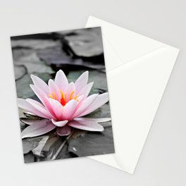 Pink Lotus Flower Waterlily Stationery Cards