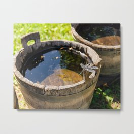 Dragonfly Resting on Bucket in the Sun Metal Print