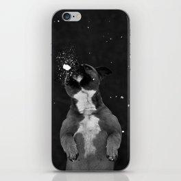 Snow Dog iPhone Skin