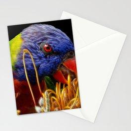 Australian Rainbow Lorikeet Stationery Cards
