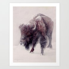 Buffalo Blizzard painting Art Print