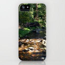Stoney Creek iPhone Case
