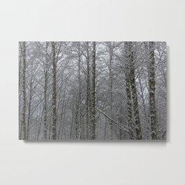 Winter Woodland - 51/365 Metal Print