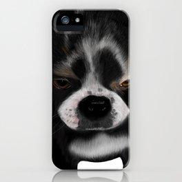 It Wasn't Me - Boston Terrier Puppy iPhone Case