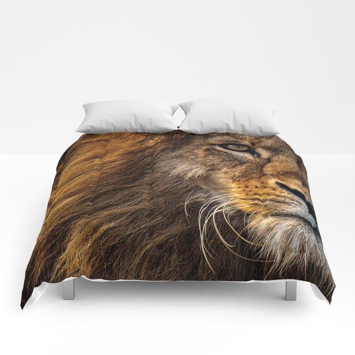 Majestic Lion Comforters
