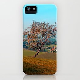 Tree on indian summer afternoon | landscape photography iPhone Case
